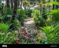 Tropical Gardens near Alum Chine, Bournemouth, UK Stock ...