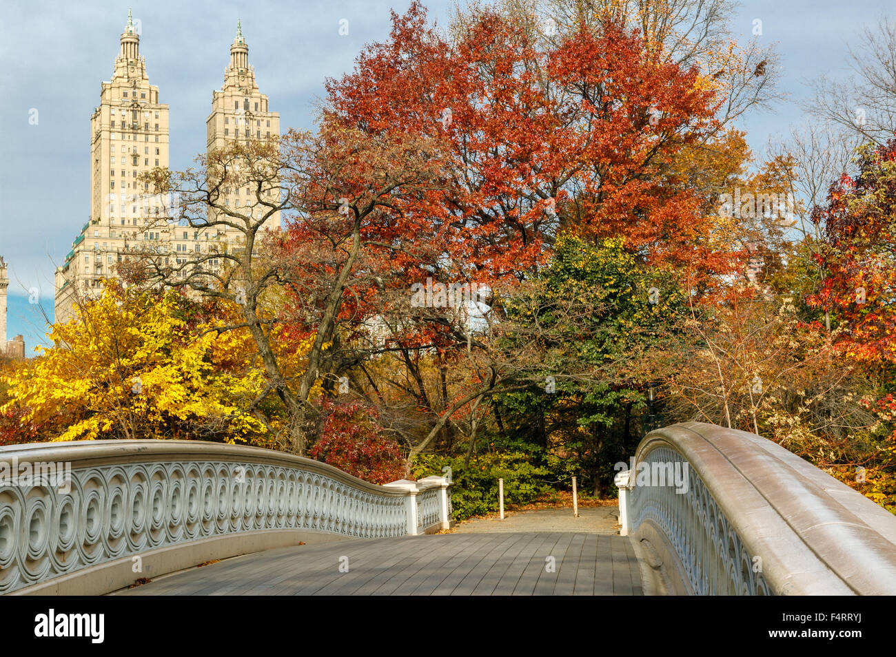 Fall Leaves Live Wallpaper Iphone Bow Bridge And Fall Colors In Central Park With Manhattan