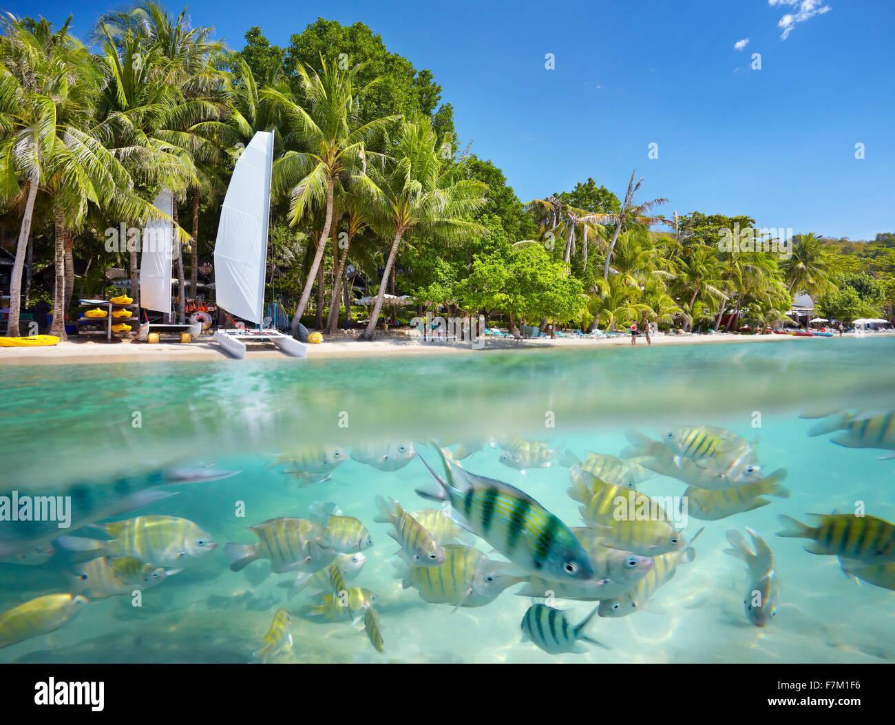 Hd Wallpaper Pack Thailand Beach Tropical Scenery At Ko Samet Island