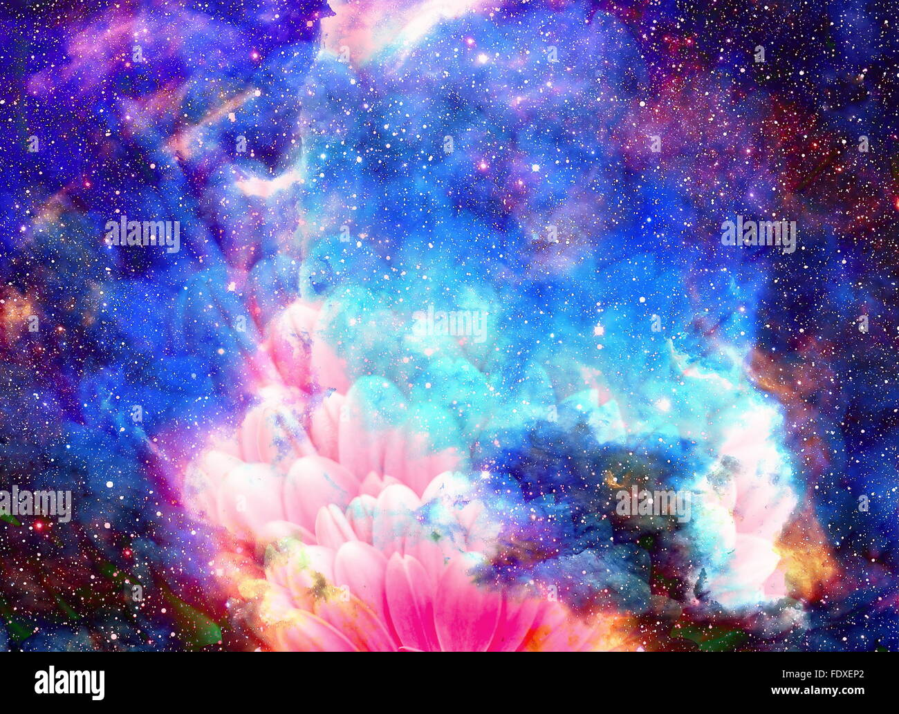 Cute Love Hd Images For Wallpaper Space And Stars With Flower Color Galaxi Background