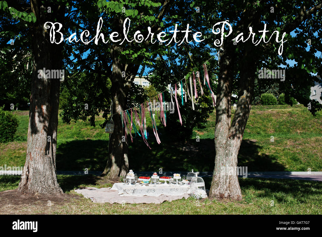 Picnic Decor Picnic Table With Decor On Grass Near Trees Bachelorette Party
