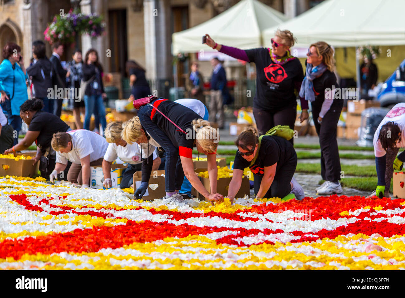 Flower Carpet On The Grand Place In Brussels Belgium