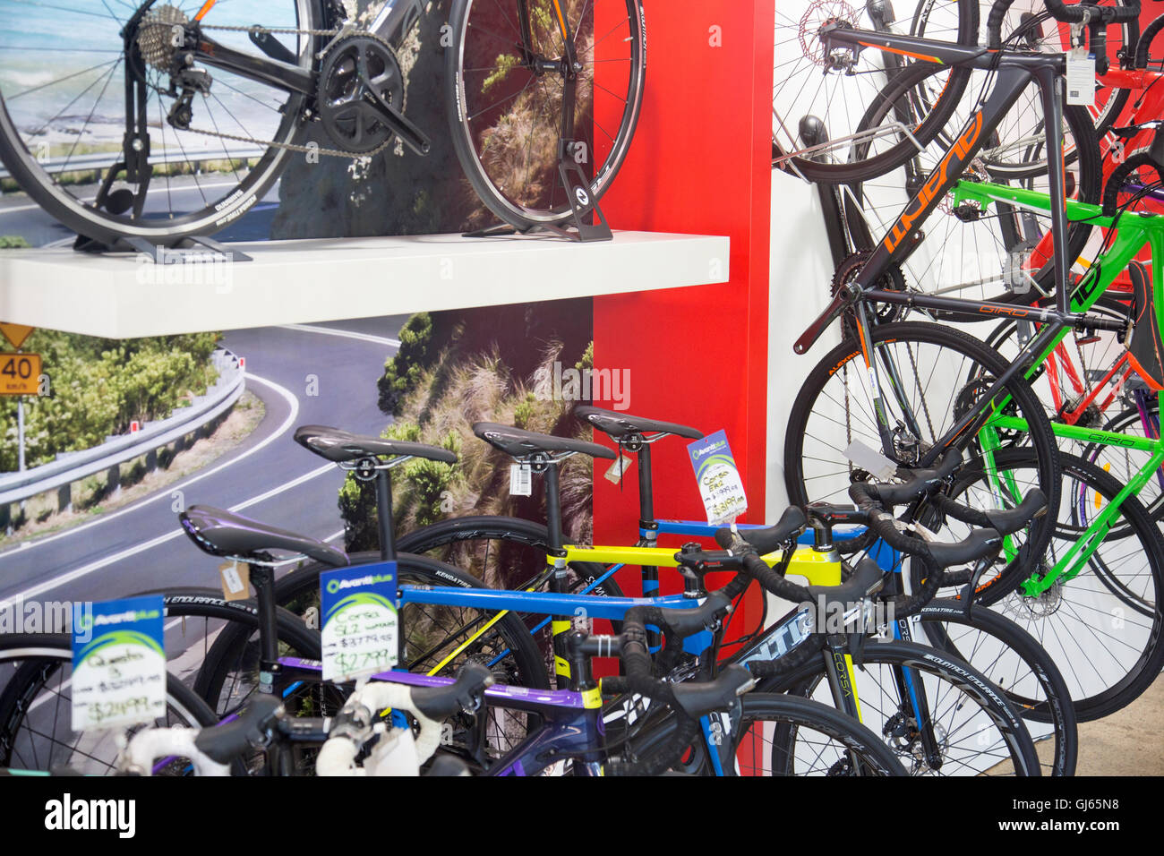 Bike Shop Sale Bicycles Cycles For Sale At Avanti Bike Shop In Narrabeen On