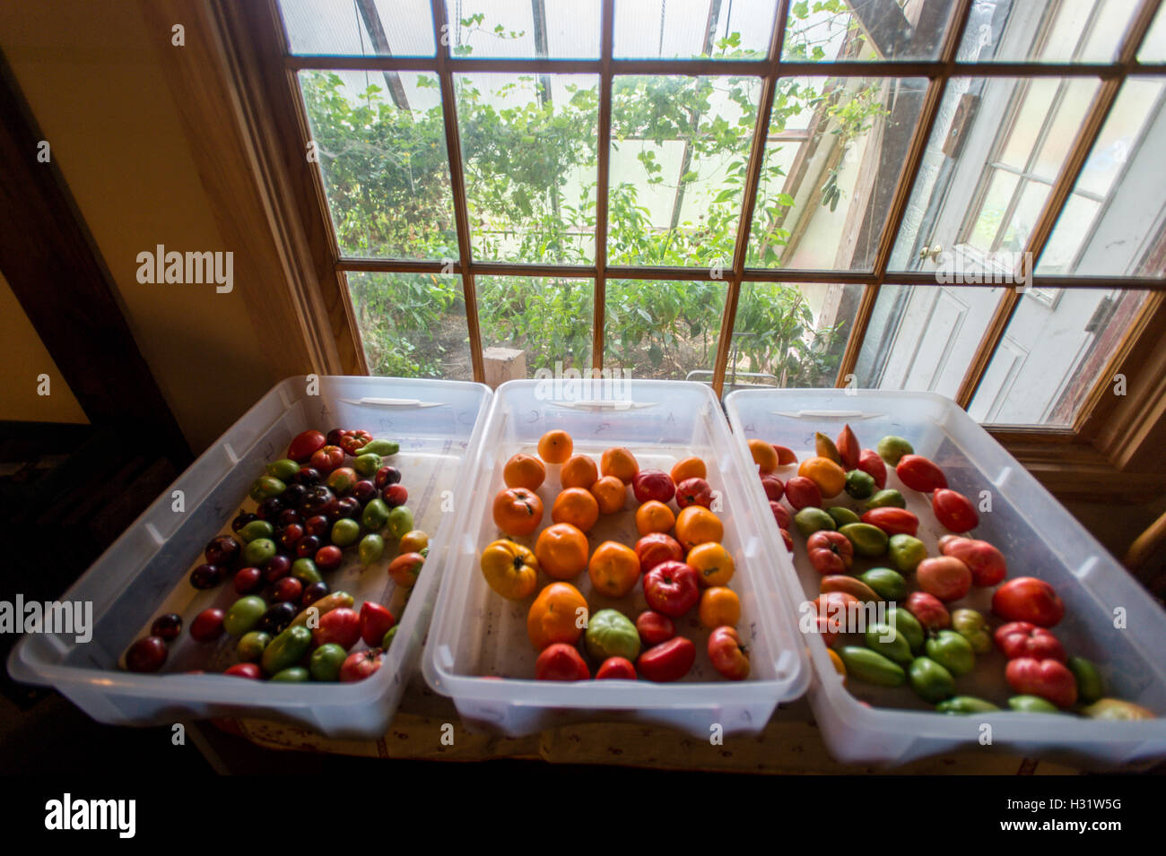 Fruit Bins For Sale Tubs Of Fresh Fruit Stock Photos And Tubs Of Fresh Fruit