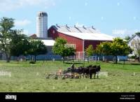 An Amish farmer working with horses in Lancaster County ...