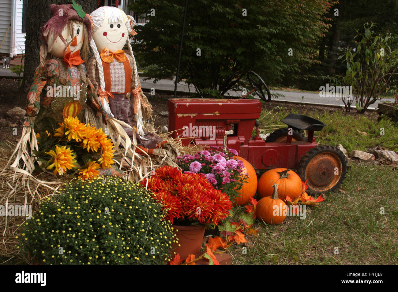 Fall Harvest Wallpaper Hd Outdoor Fall Decoration With Scarecrows Mums Tractor