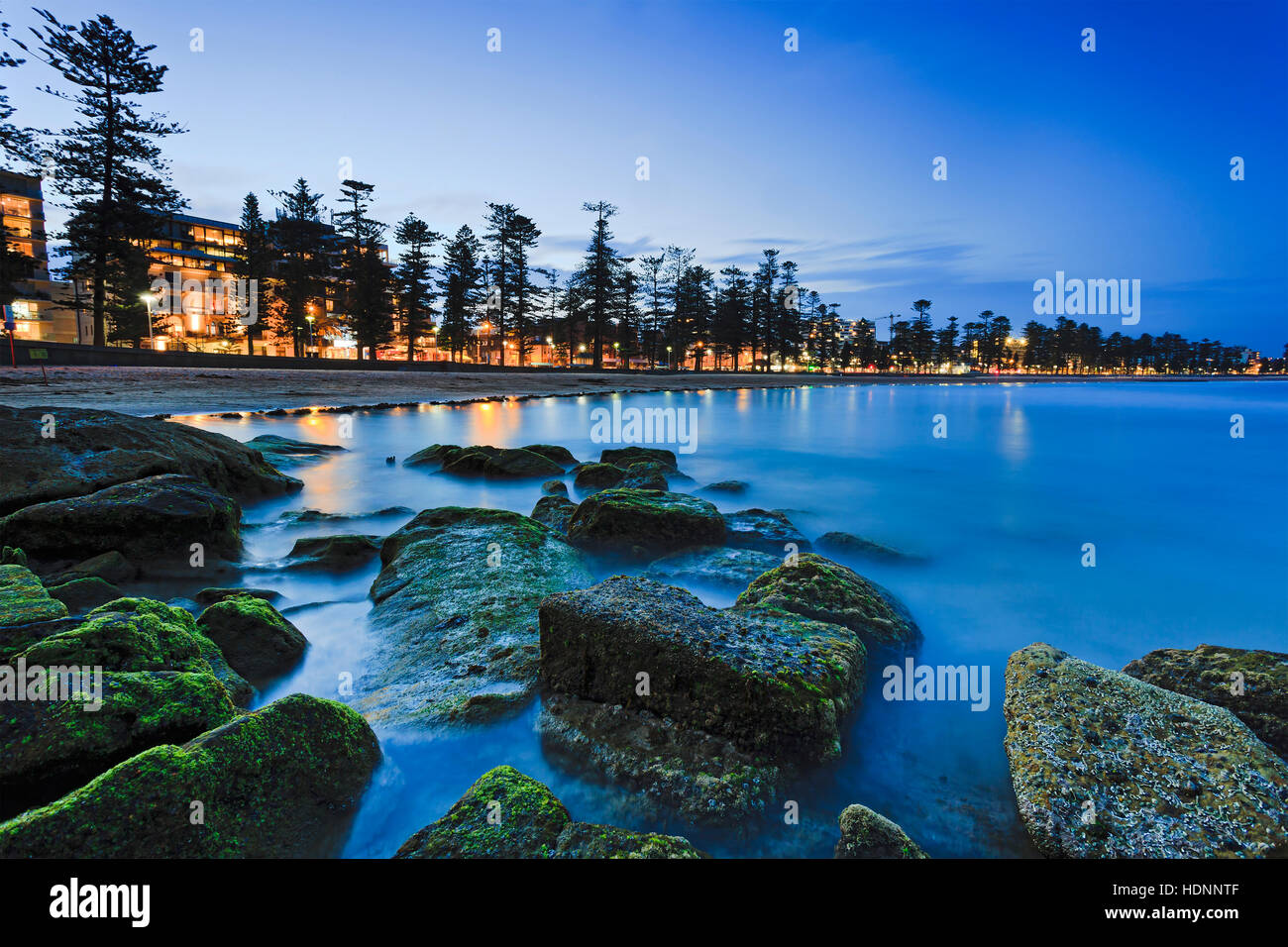 Buy Plants Sydney Green Water Plants Covered Boulders At Sydney Northern