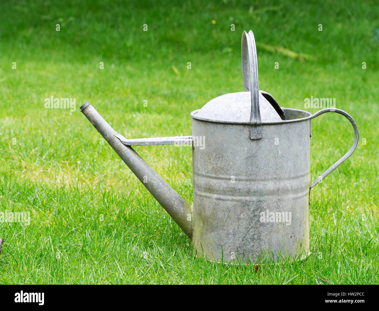 Galvanized Watering Cans Galvanized Old Watering Can Old Fashioned Gardening