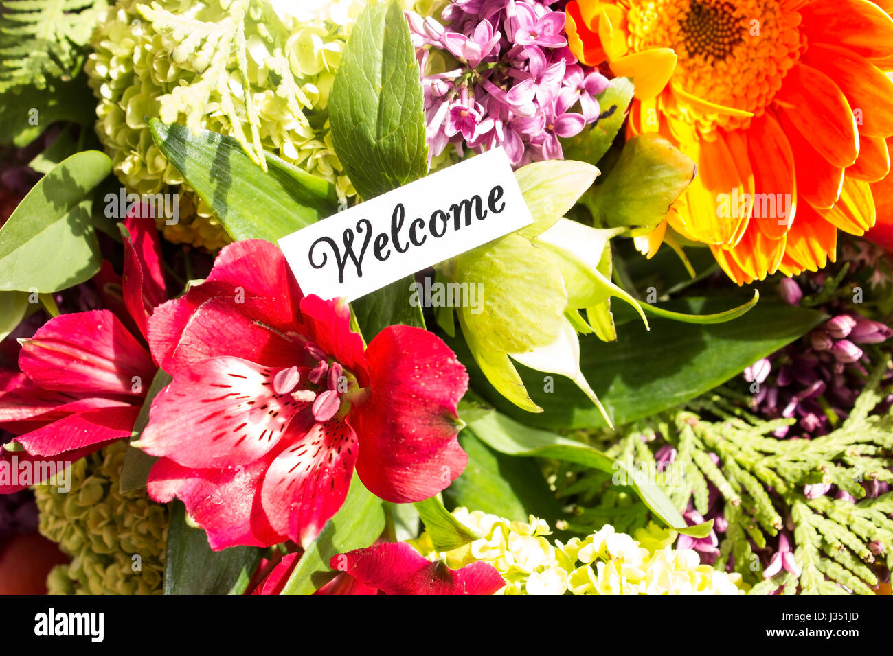 Autumn Love Hd Live Wallpaper Welcome Card With Bouquet Of Flowers Stock Photo