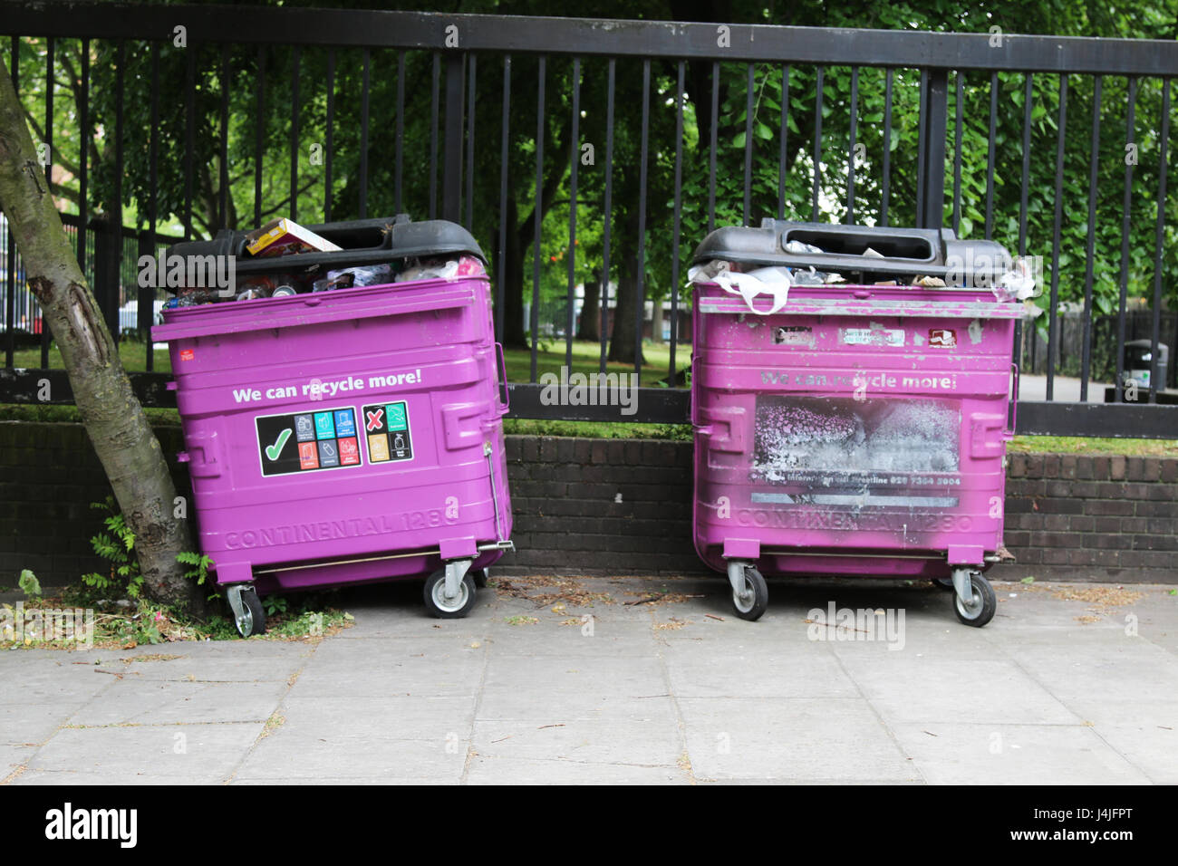 Pink Bins Pink Recycling Bin Stock Photos Pink Recycling Bin Stock Images