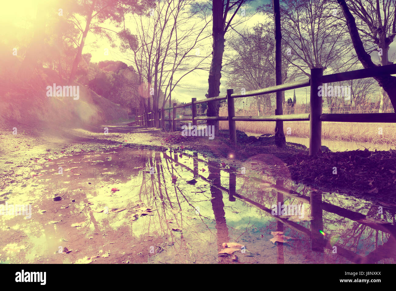 Bilder Vintage Autumn Rural Road Fence And Trees Puddle After Rain In Autumn