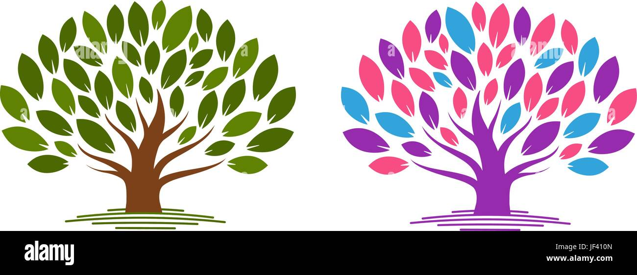 Family Tree Genealogy Stock Vector Images - Alamy