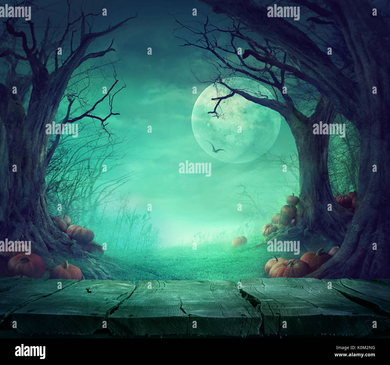 Fall Wallpaper Hd Free Halloween Background Spooky Forest With Dead Trees And