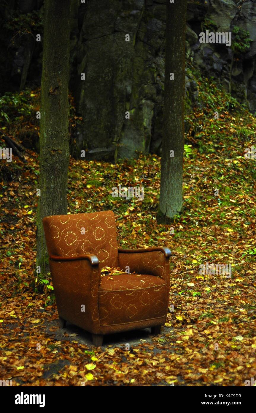 Dr. Sessel Sessel Im Wald Stock Photo 157622803 Alamy