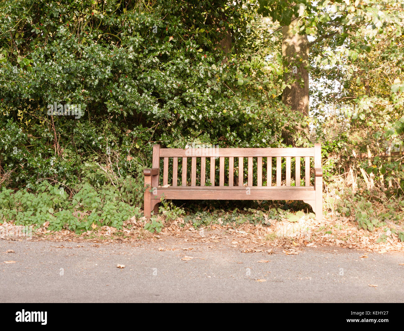 Wooden Park Benches Front Meditative Landscapes Stock Photos And Meditative Landscapes
