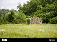 Italian countryside in spring, ruined house, field and ...