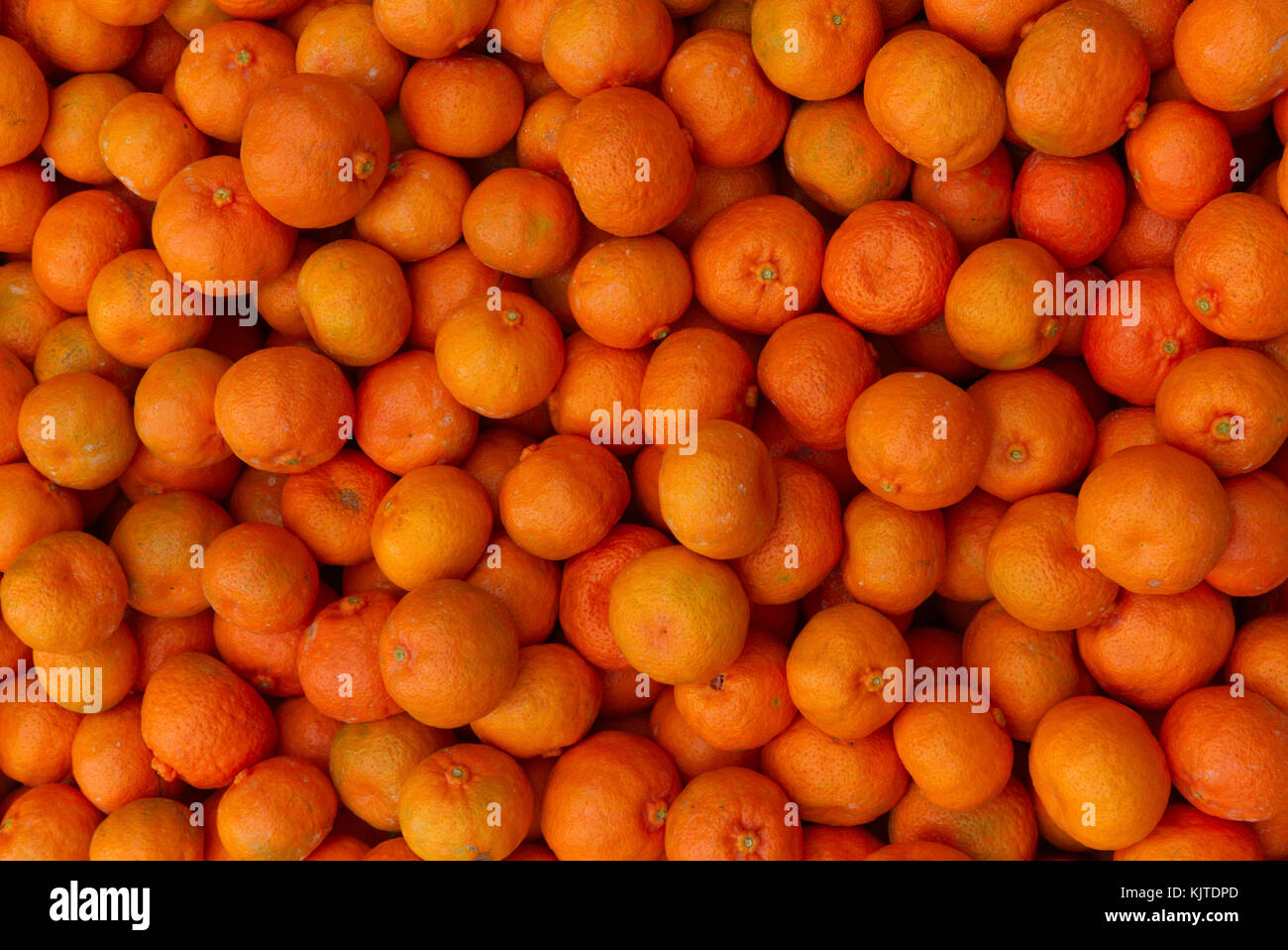 Fruit Bins For Sale Bin Citrus Stock Photos And Bin Citrus Stock Images Alamy