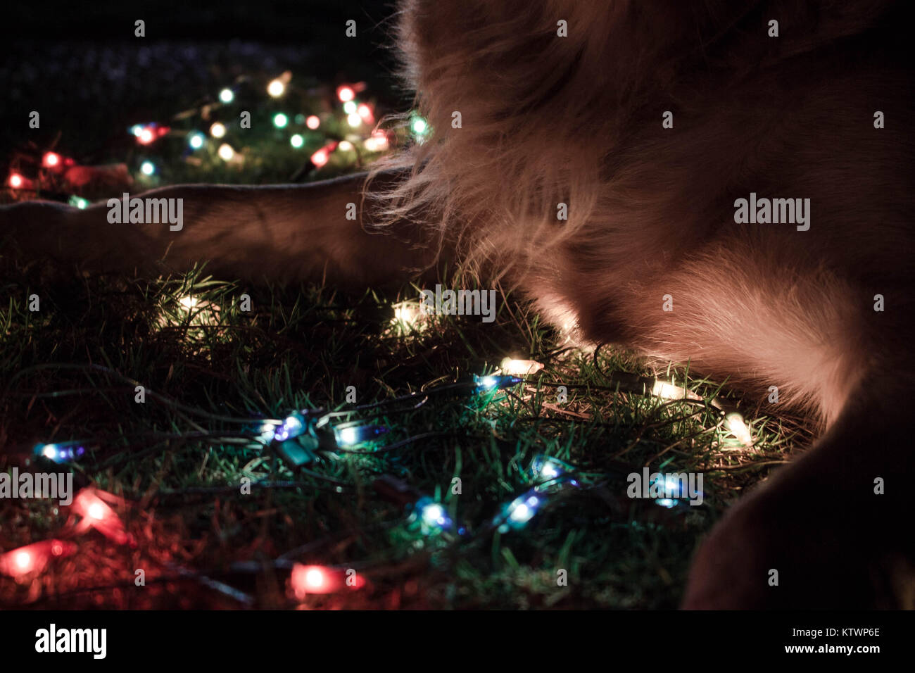 Tumblr Lights High Resolution Stock Photography And Images Alamy