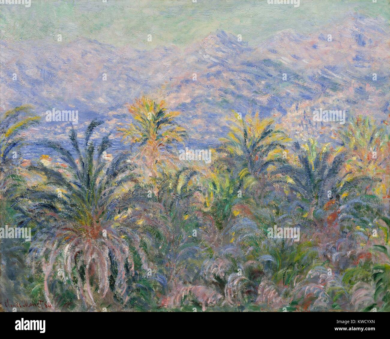 Claude Monet Cuadros Palm Trees At Bordighera By Claude Monet 1884 French
