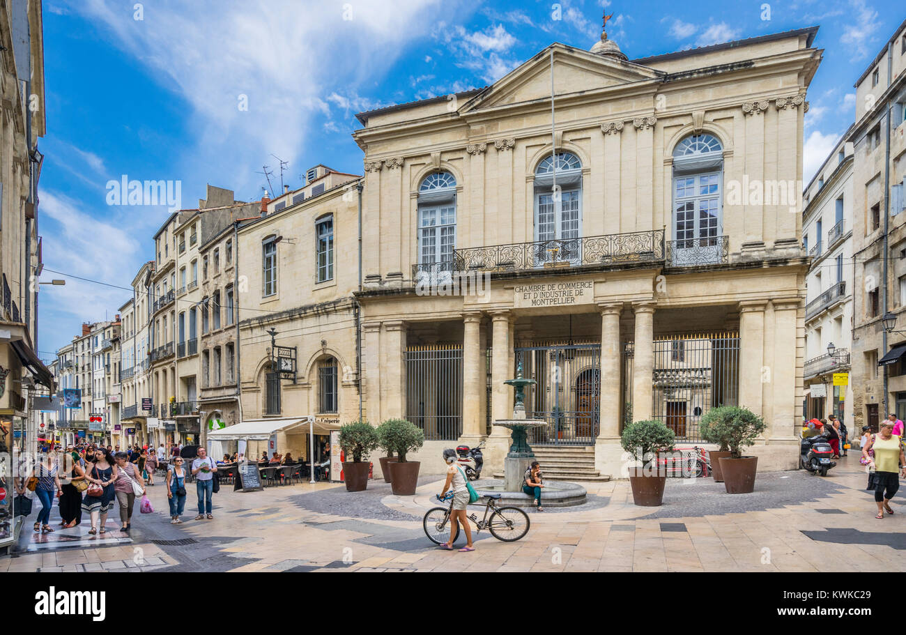 France, Hérault department, Montpellier, Hotel Saint-Côme, seat of Stock Photo - Alamy