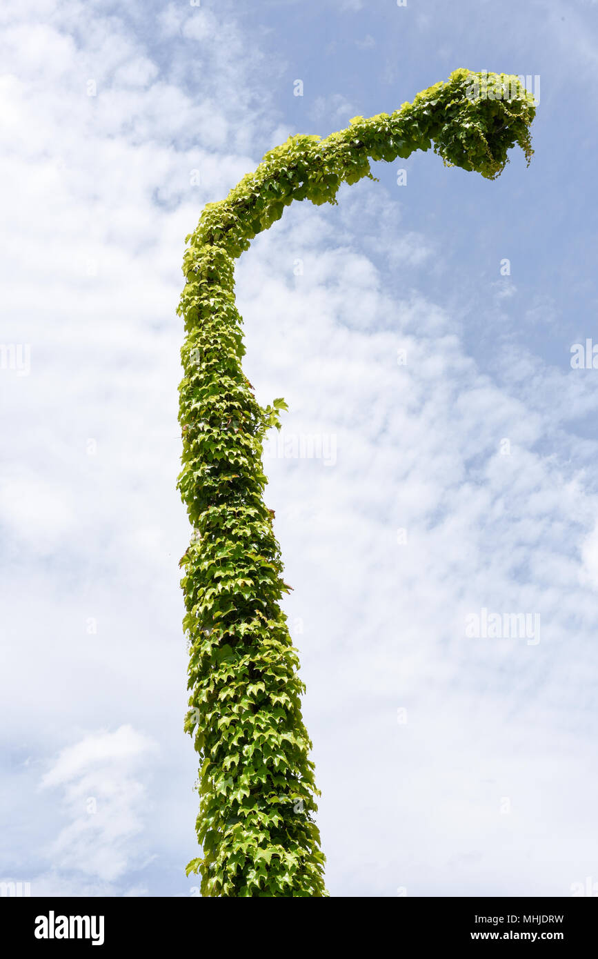 Old Street Lamp Full Of Ivy On The Swiss Alps Stock Photo Alamy
