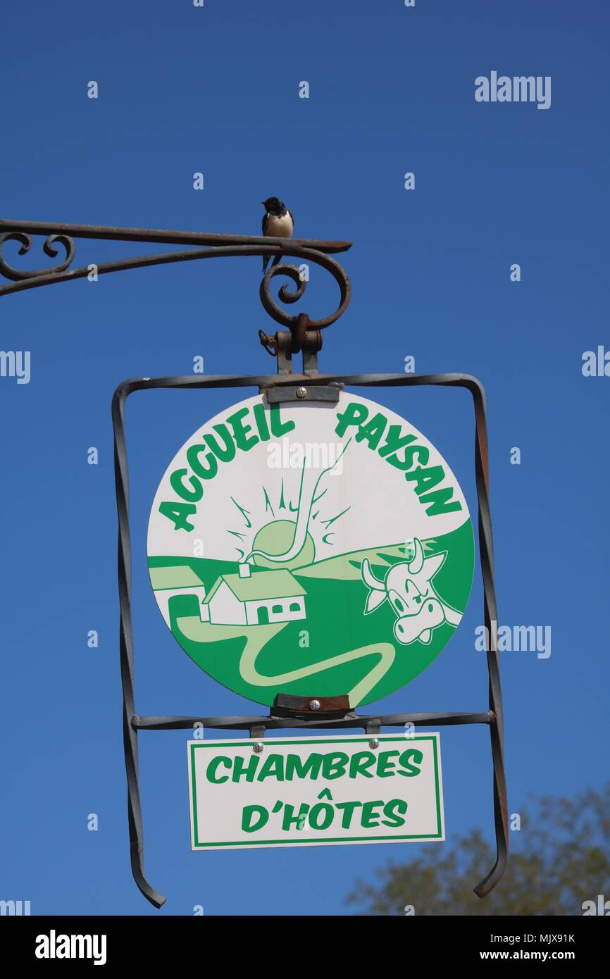 Swallow Sitting On A Sign In France For Chambres D Hotes With The Logo For Accueil Paysan Which Means Rural Welcome And A Blue Sky Behind It Stock Photo Alamy