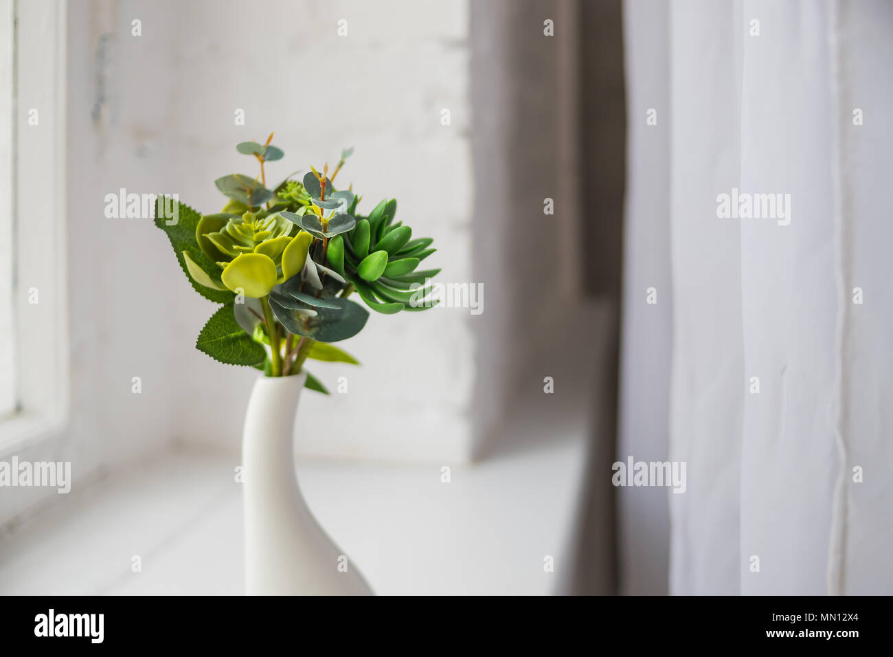 Small House Plants With Flowers Home Indoor Plants Aloe Cactus Succulent Plant Small Plants On