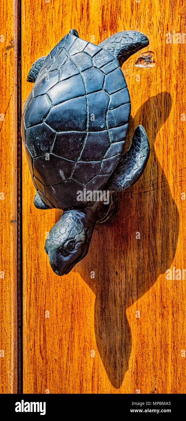 Turtle Door Knocker Door Knockers Found On Columbian Doors Have Exotic Shapes Stock
