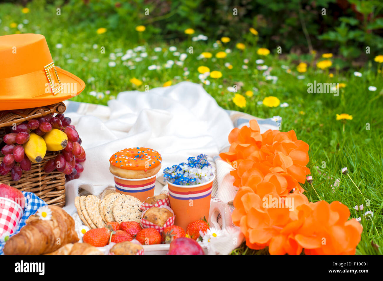 Picnic Decor Picnic In The Celebration Of The King S Day Spring In The