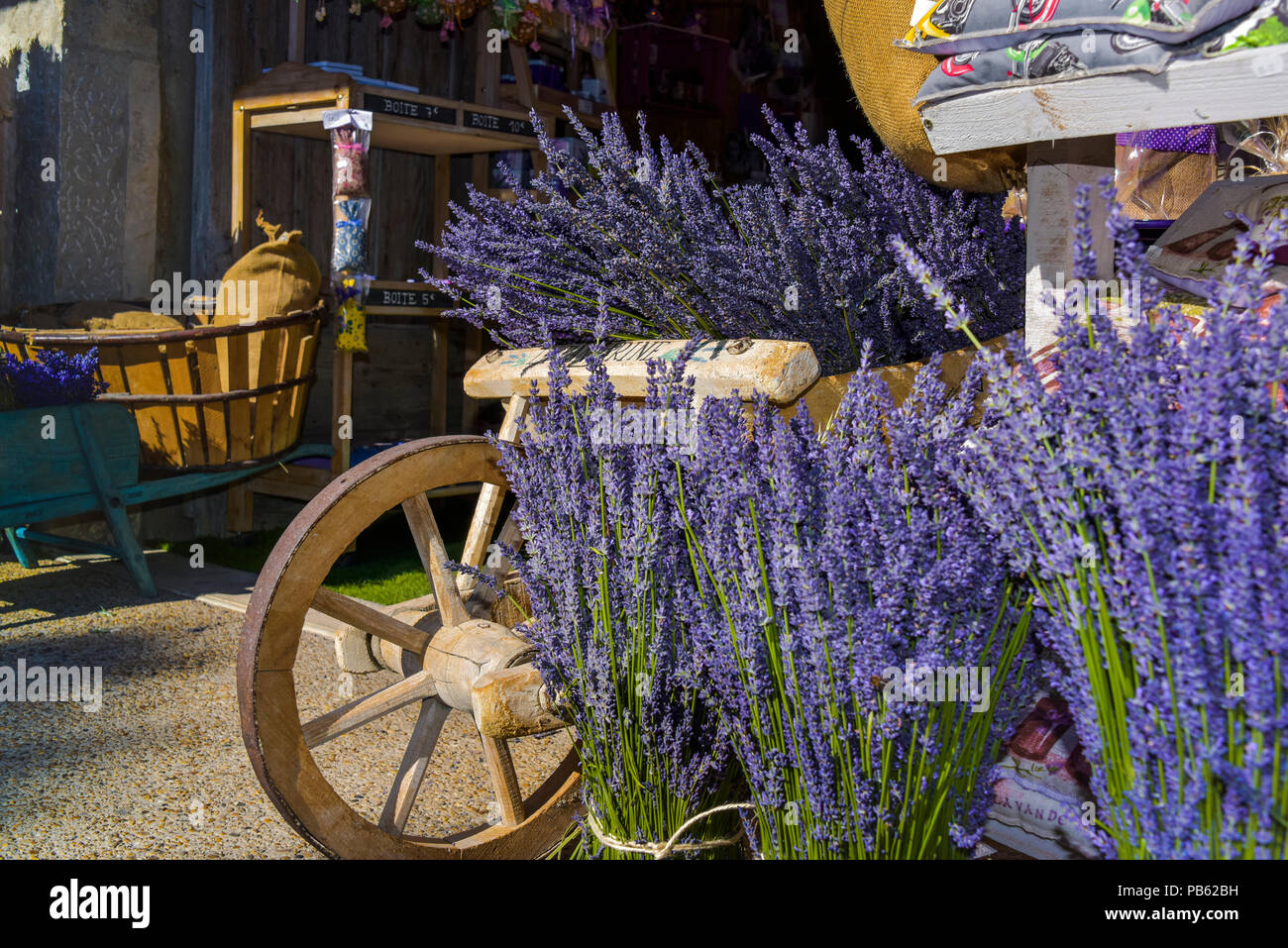Provence Decoration Decoration With Typical Lavender Bushes Provence France
