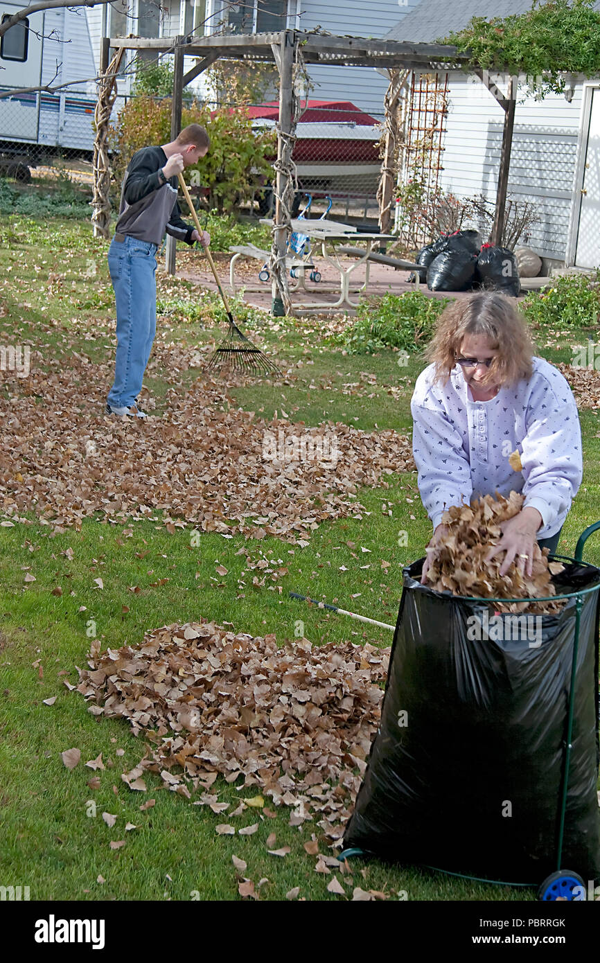 Backyard Clean Up Yard Cleanup Stock Photos Yard Cleanup Stock Images Alamy