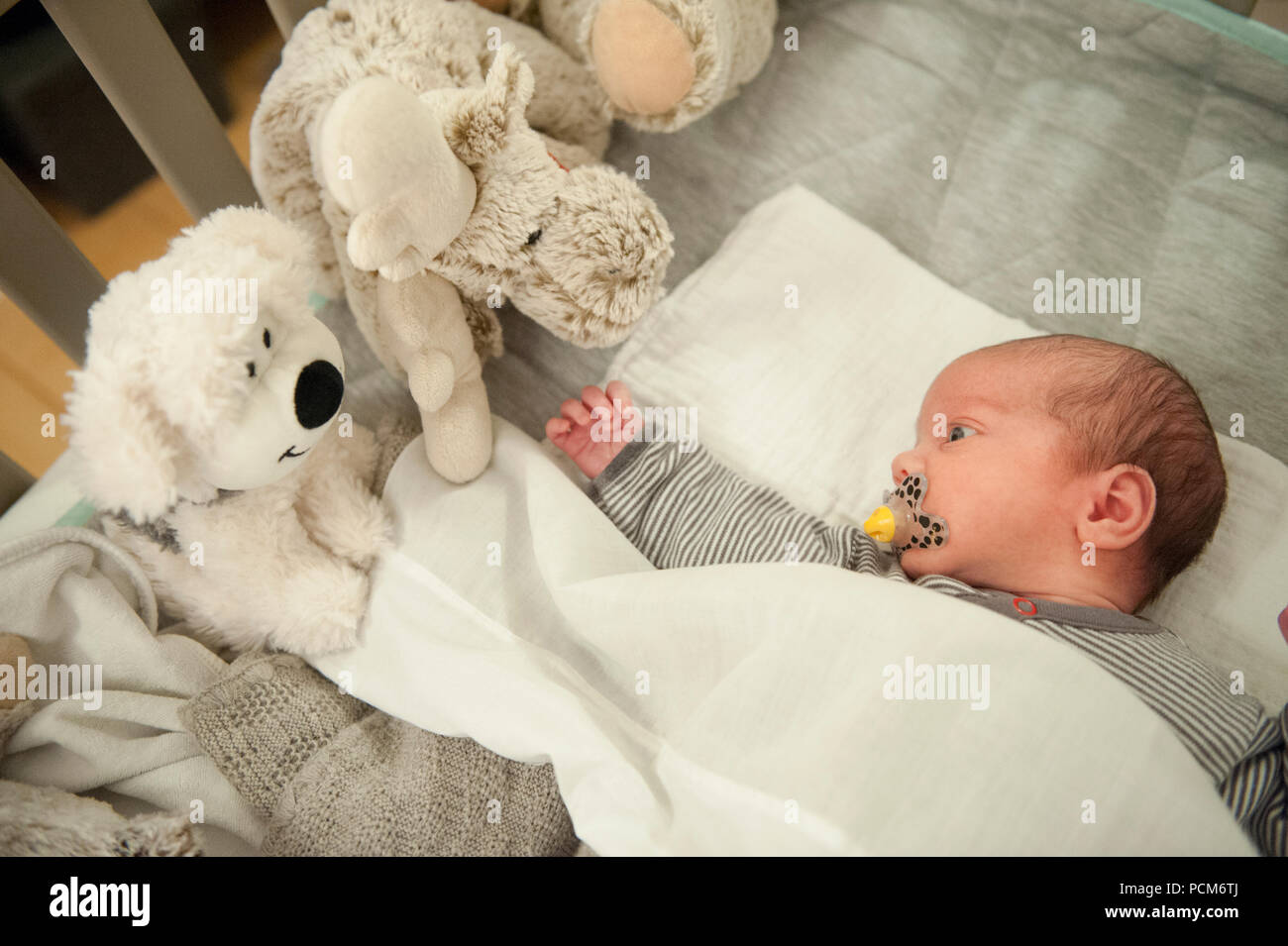 Baby Newborn Teddy Illustration Picture Of A Newborn Baby Boy Surround By Toys