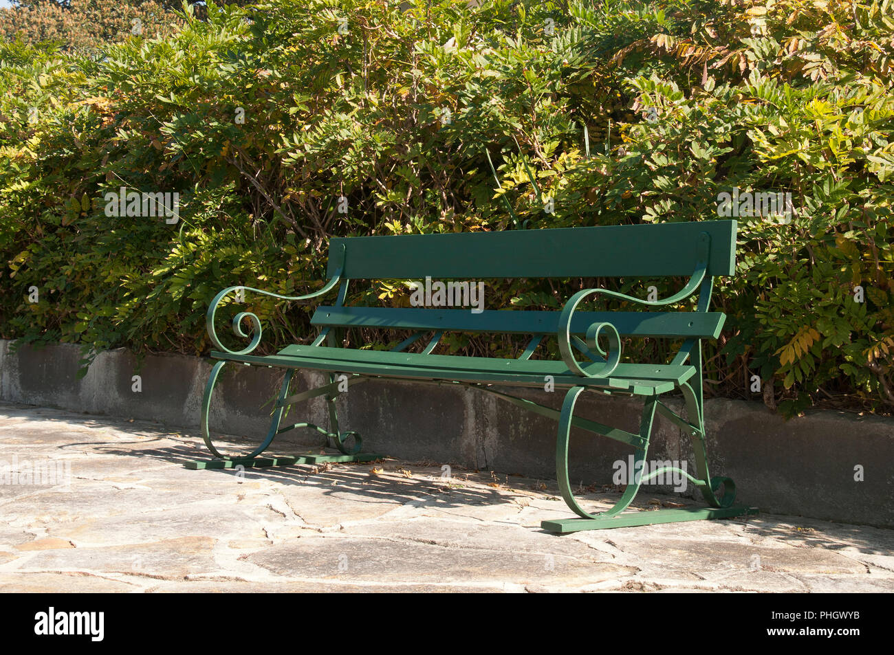Garden Bench Australia Sydney Australia Wooden Garden Bench In Front Of A Hedge Stock