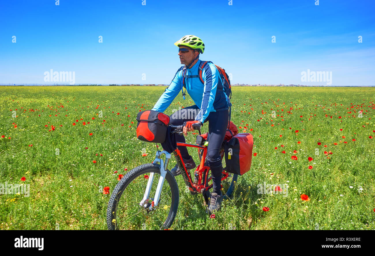 Camino Frances On Bike Biker By Camino De Santiago In Bicycle At Saint James Way Of