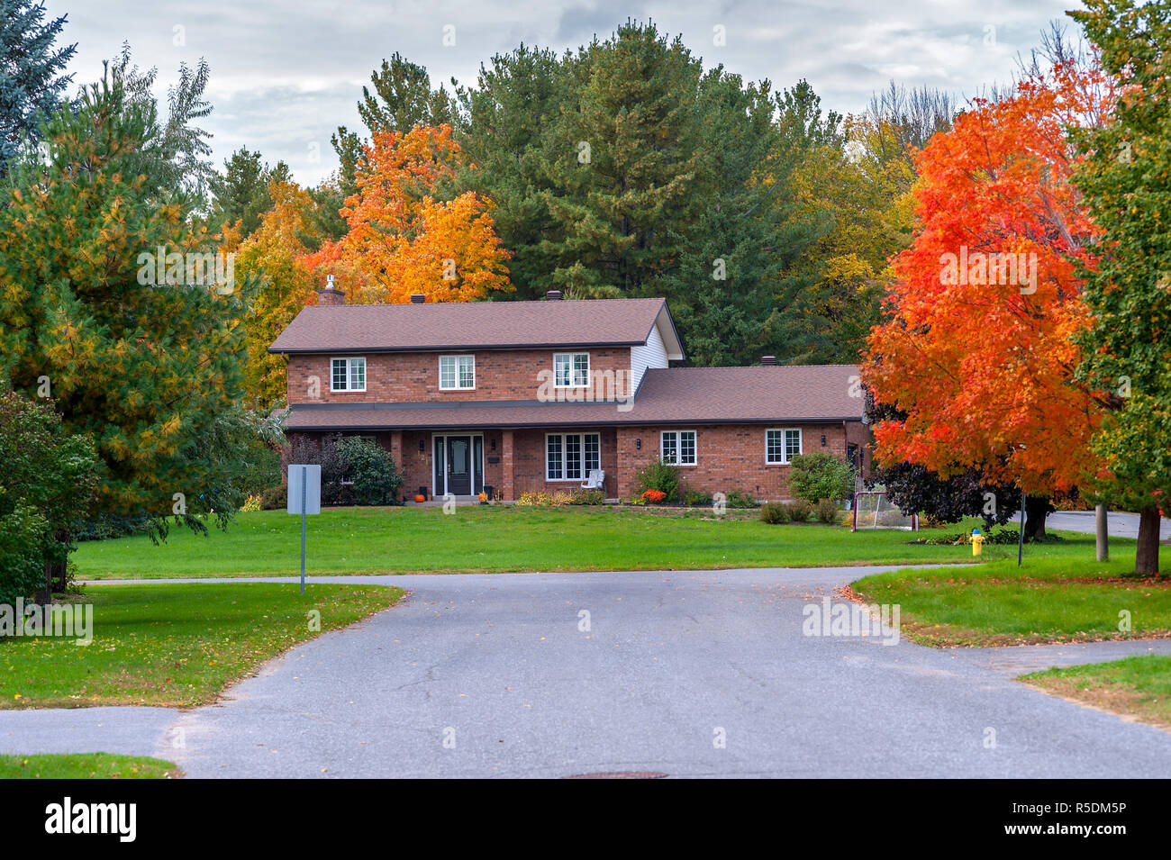 Brilliant House Brick House And Maple Trees In Brilliant Color Stock Photo
