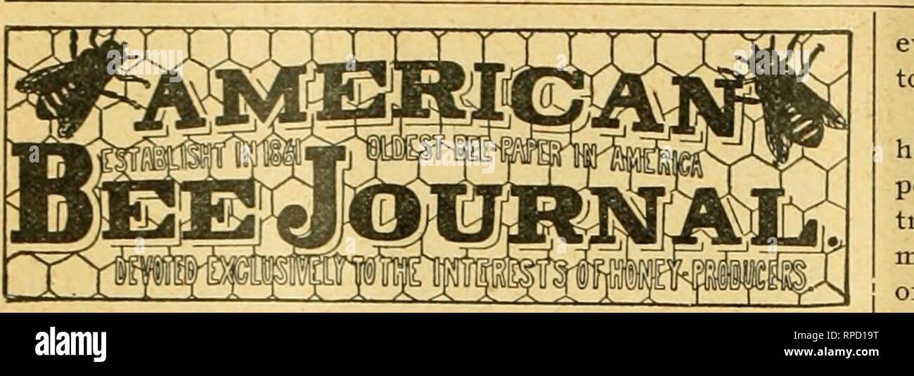 American bee journal Bee culture; Bees 440 AMERICAN BEE JOURNAL