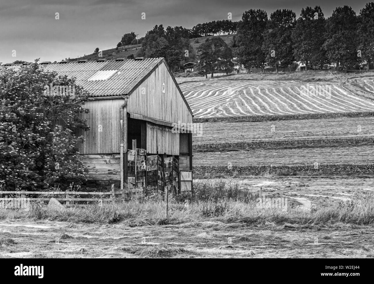 Black And White Countryside Scene Showing An Old Barn Striped Fields And Dry Stone Walls Taken In Baildon Yorkshire Stock Photo Alamy