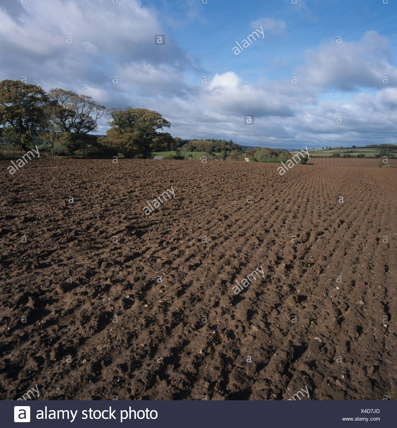 Suelo Franco Sandy Loam Stock Photos And Sandy Loam Stock Images Alamy