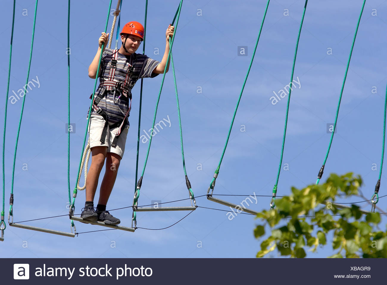 Hochseilgarten Kiel Kiel Ropes And Airy Heights Stock Photo 282359821 Alamy