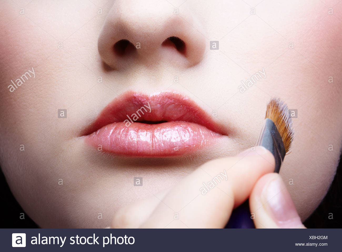 Schminkvorlage Zebra Face Make Up Stock Photo 282502324 Alamy