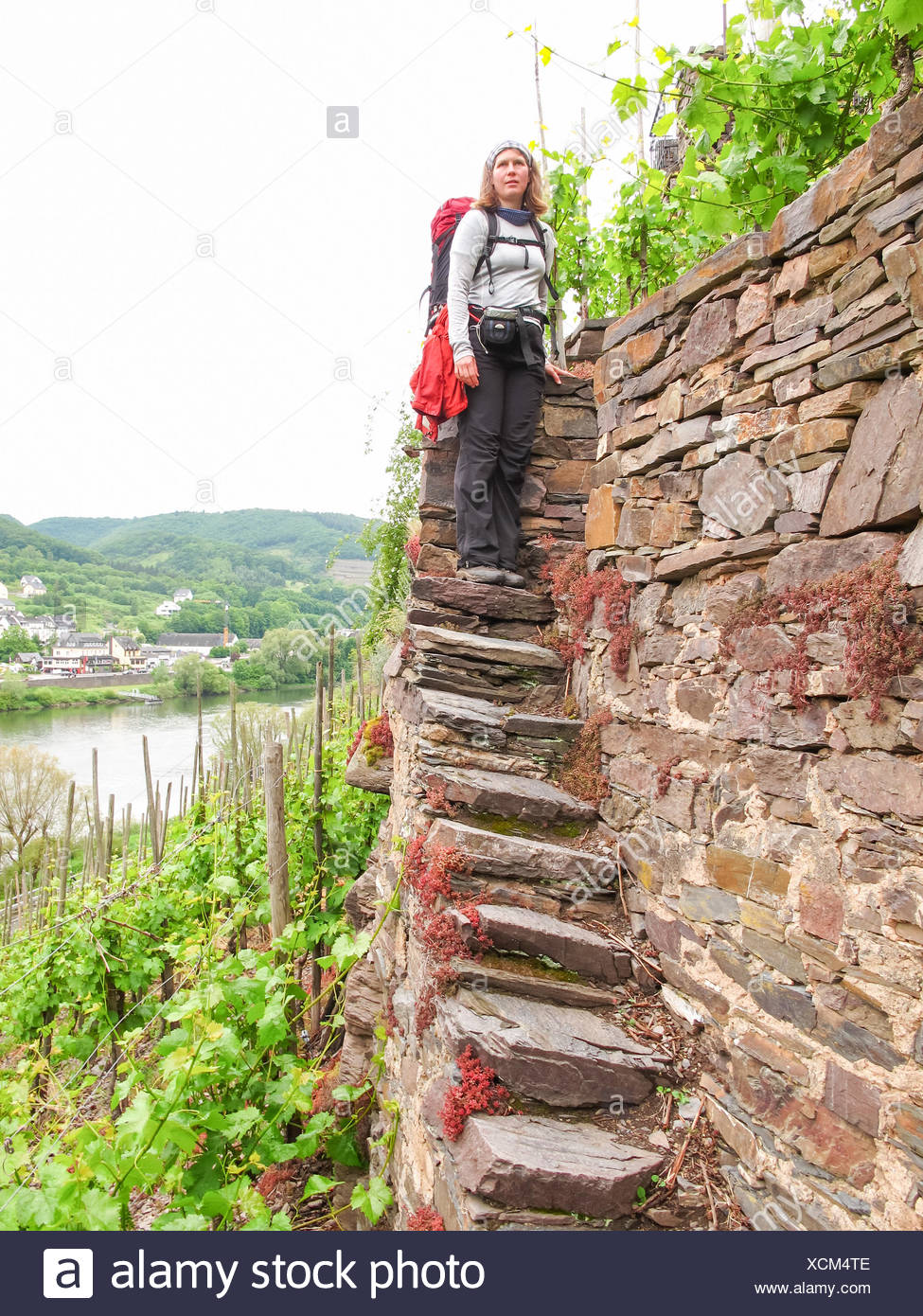 Steintreppe Germany Rhineland Palatinate Cochem On The Mosel Steep Path