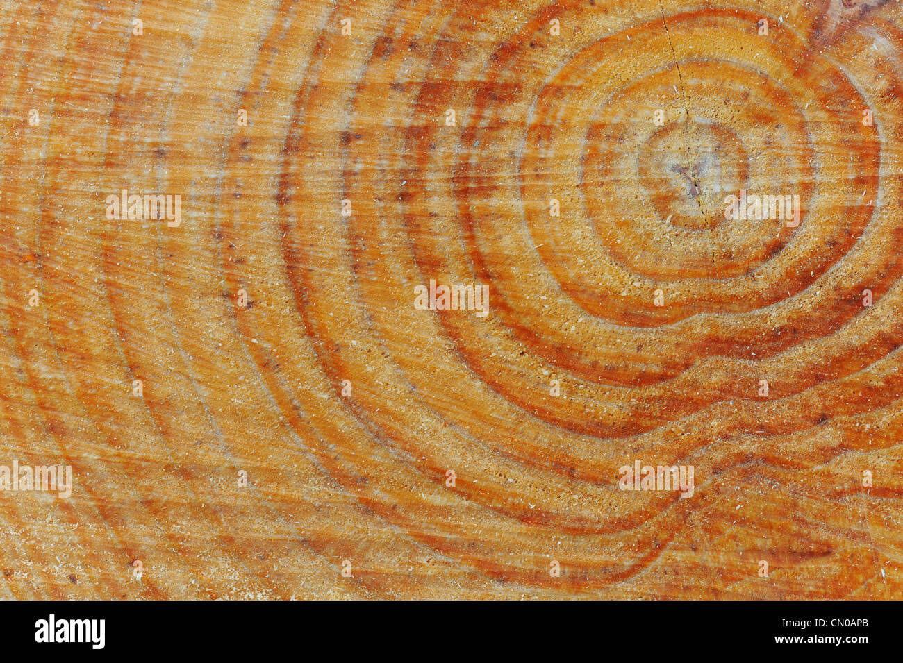 Außenwand Dekoration Metall Gesägtes Holz Stockfotos And Gesägtes Holz Bilder Alamy