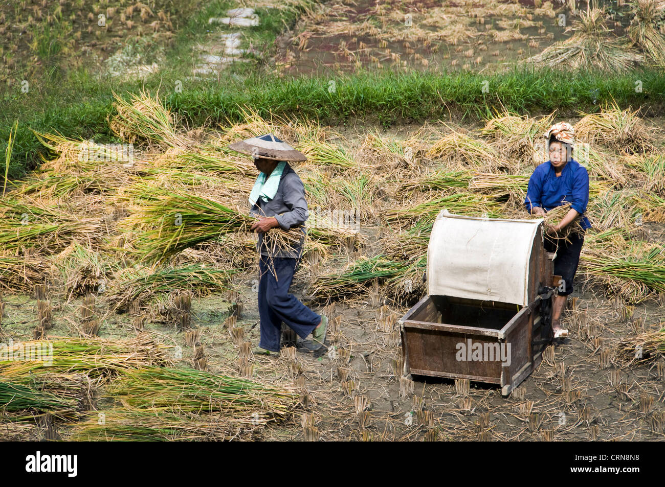 Chinesische Küche In Der Nähe Chinese Peasants Stockfotos And Chinese Peasants Bilder Alamy