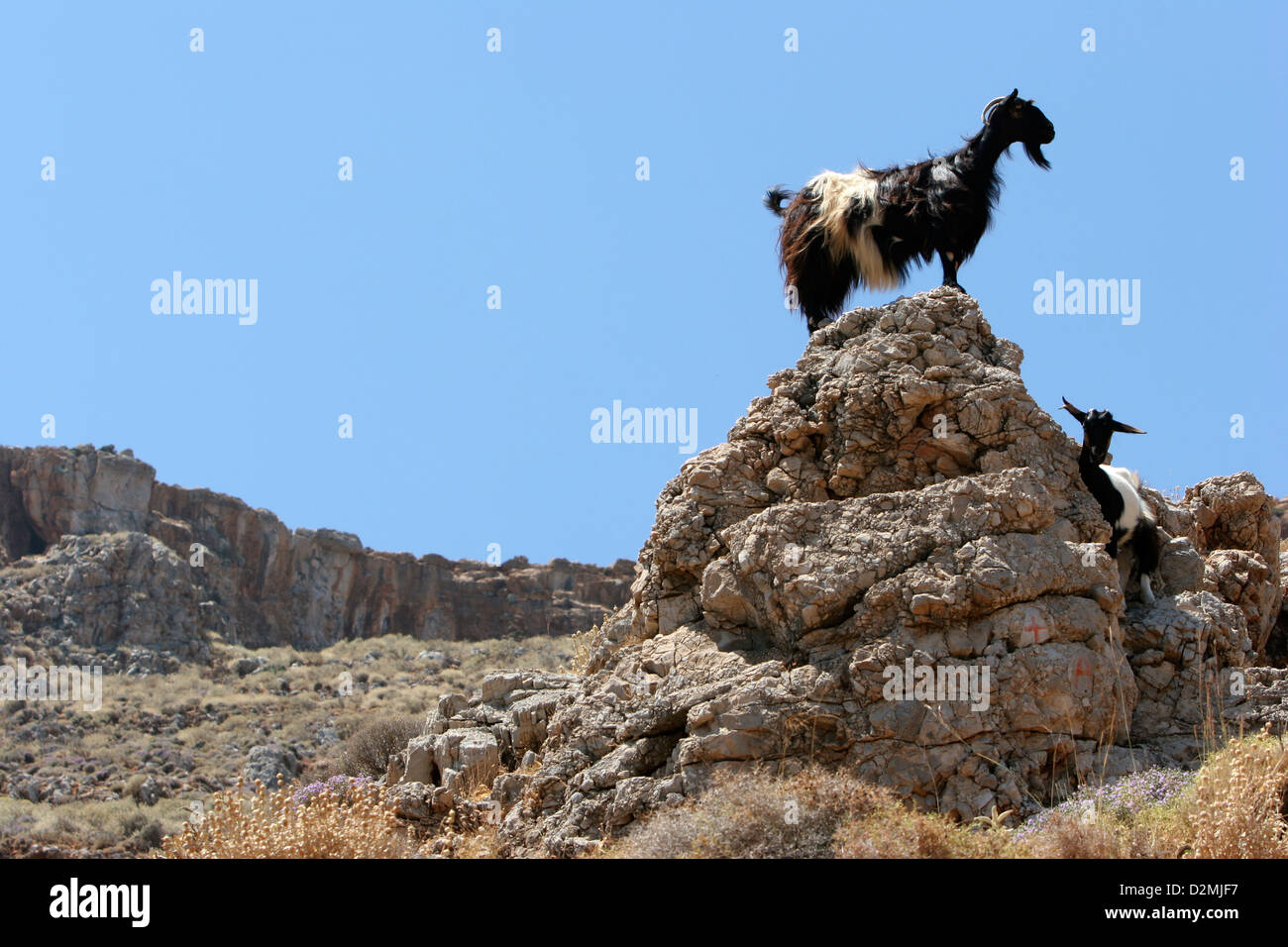 Goldene Uhr Stock Photos Goldene Uhr Stock Images Alamy Guard Mount Stockfotos And Guard Mount Bilder Alamy