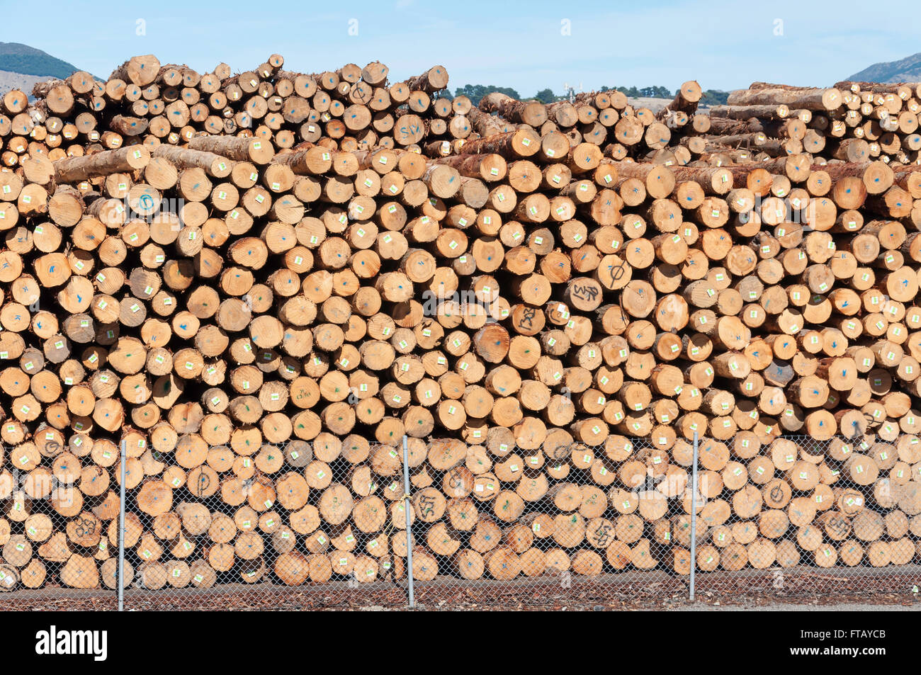 Container Haus Nordirland Piles Stockfotos And Piles Bilder Alamy