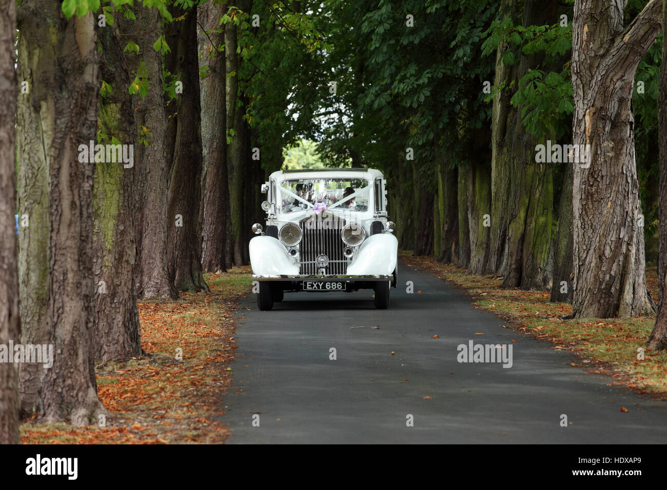 Rolls Royce Hochzeit White Rolls Royce Stockfotos And White Rolls Royce Bilder