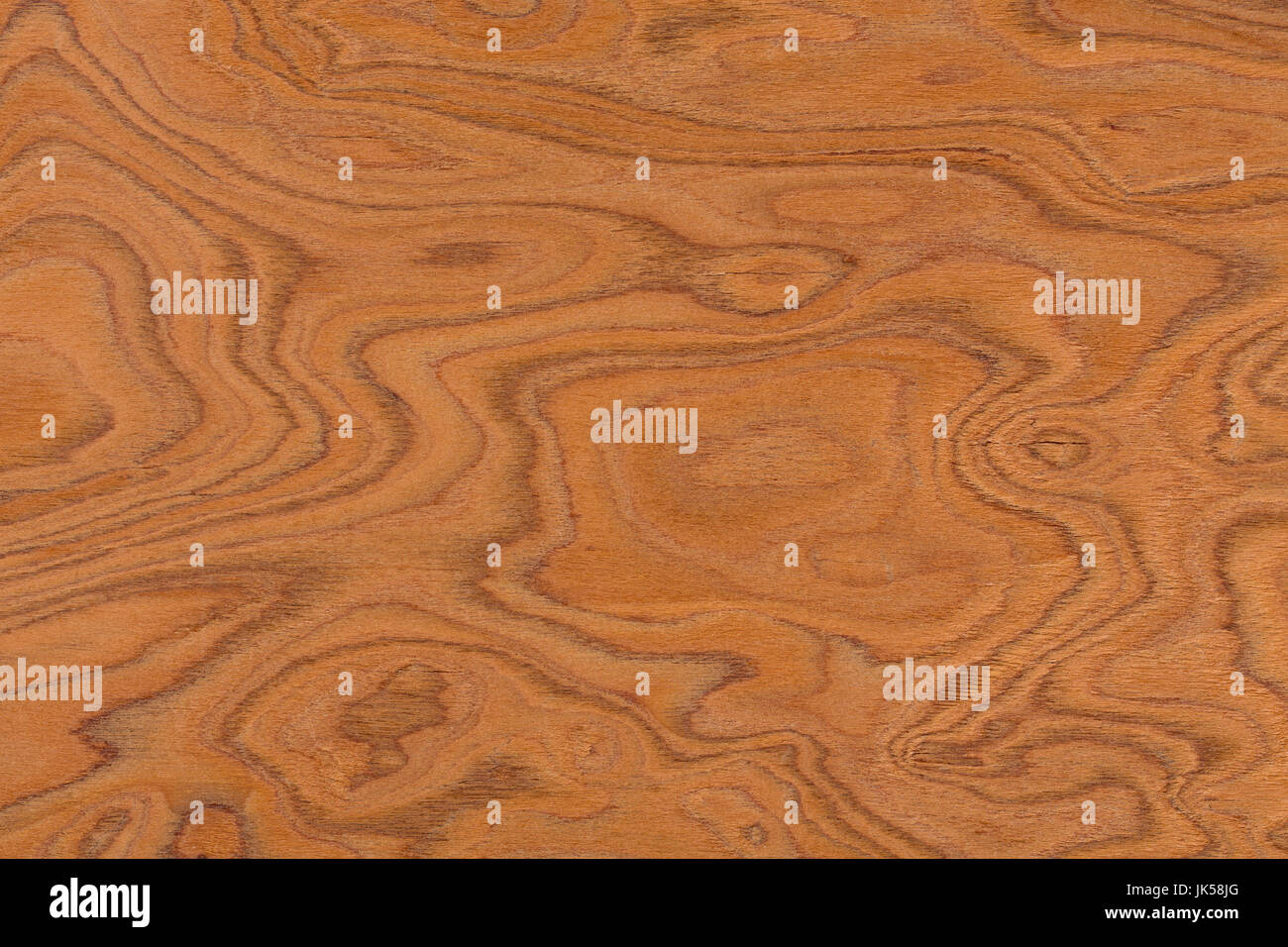 Wurzelholz Textur Burl Wood Stockfotos Burl Wood Bilder Alamy