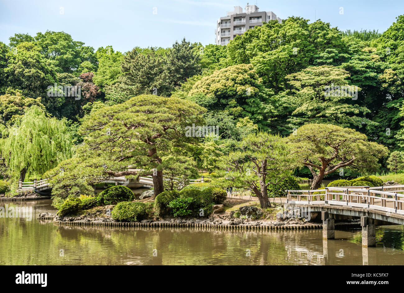 Asiatischer Garten Bäume Japanischer Garten Stockfotos And