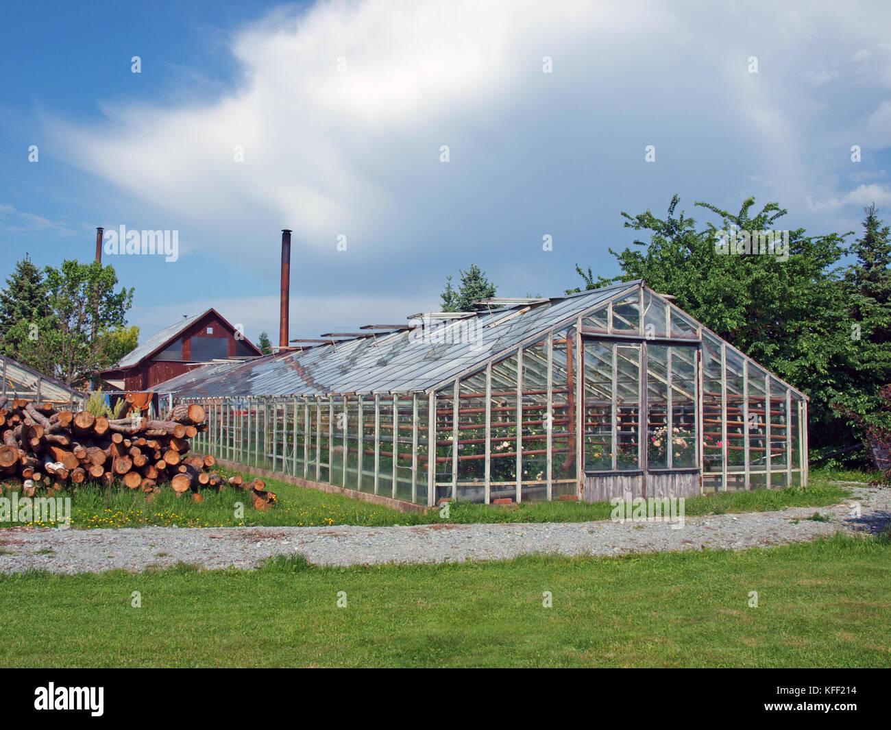 Gewachshaus Glas Kaufen Pin By Tex Herbel On Greenhouse Plans