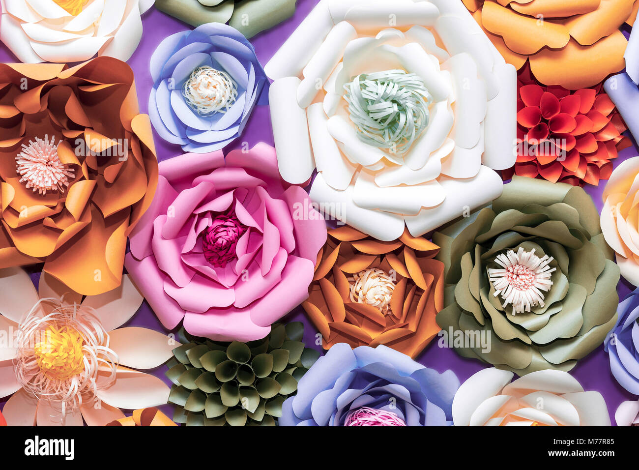Blumen An Der Wand Vector Pink 3d Vintage Wedding Stockfotos And Vector Pink 3d
